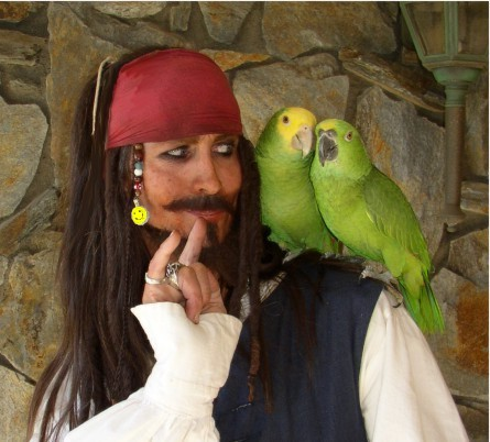 Parrot Jack a Johnny Depp look-alike pirate entertainer for birthday parties