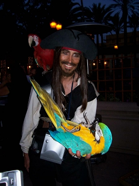pirate entertainment - a pirate with a parrot