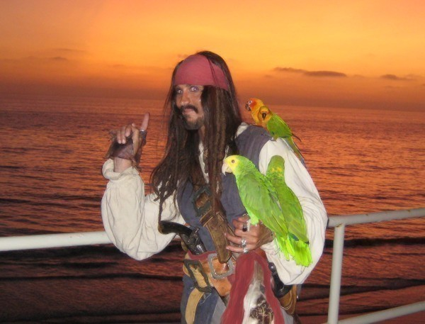 a pirate with parrot for hire