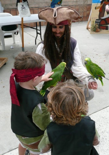 Parrot Jack the pirate entertainer at Ventura Pirate festival